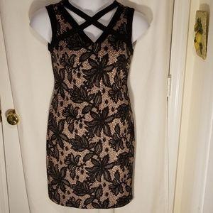 Enfocus Studio Dress 12